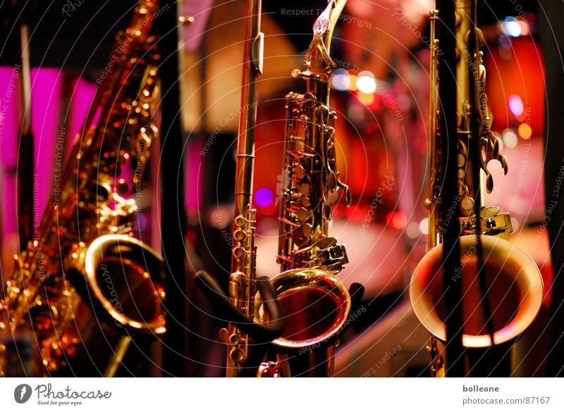 Trio Musikinstrument Saxophon Jazz Konzert Kunst musizieren Gebet Licht Stimmung Klang Ton Kultur Spielfreude Blasinstrumente zupfen Spielen Saite Musikfestival
