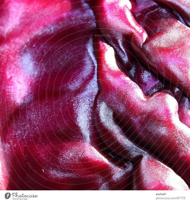 Brassica I Farbfoto Makroaufnahme Muster Strukturen & Formen Reflexion & Spiegelung Gemüse Wellen Küche Pflanze Nutzpflanze violett rot Farbe Rotkohl