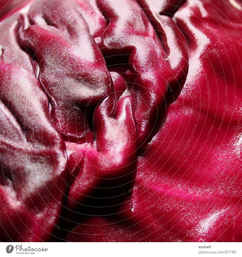 Brassica II Farbfoto Nahaufnahme abstrakt Strukturen & Formen Reflexion & Spiegelung Gemüse Vegetarische Ernährung Garten Küche Pflanze Nutzpflanze ästhetisch