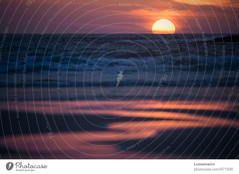 Feuertaufe Himmel Ferien & Urlaub & Reisen blau schön Wasser Erholung Meer rot Landschaft Ferne Strand Umwelt Freiheit Stimmung Sand Horizont