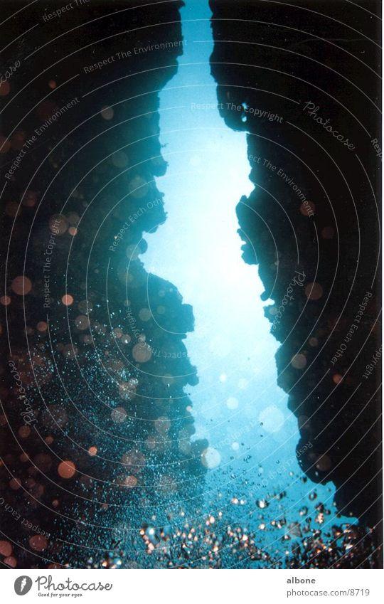 Korallenspalte Wasser Luftblase