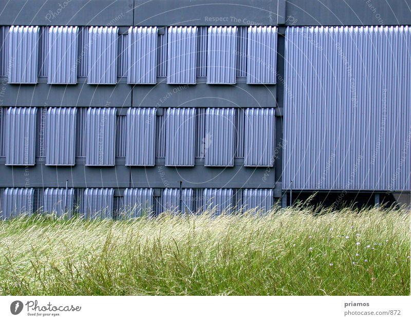 lamelen Fenster Wiese Gebäude Architektur Lamelle