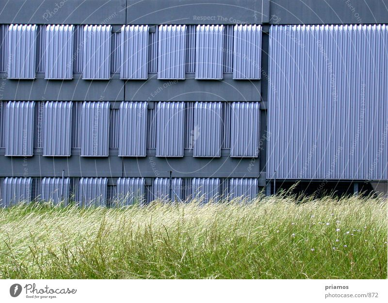 lamelen Wiese Fenster Gebäude Architektur Lamelle