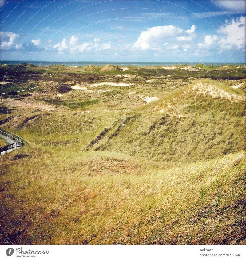 Aussicht Himmel Natur Ferien & Urlaub & Reisen blau Pflanze grün Wasser Sommer Meer Erholung Landschaft ruhig Wolken Ferne Gras Küste