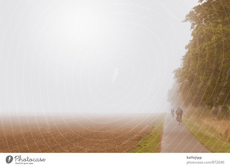 benebelt durch brandenburg Mensch Natur Ferien & Urlaub & Reisen Ferne Umwelt Straße Sport Freiheit Gesundheit Freizeit & Hobby Wetter Lifestyle Feld Nebel Verkehr Fahrrad
