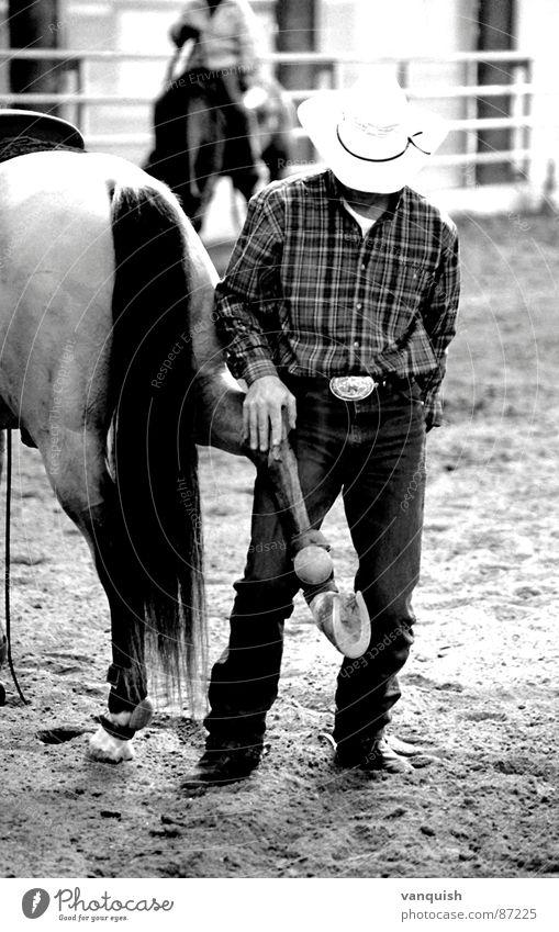 Dunit, my Friend Spielen Pferd Sportveranstaltung Säugetier Cowboy Reitsport Western Reiter