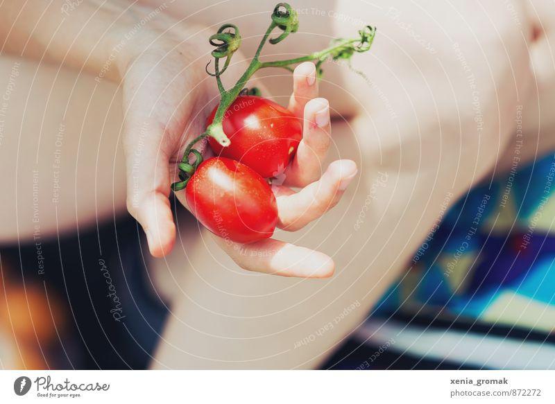 Tomaten Ferien & Urlaub & Reisen Sommer Sonne rot Hand Umwelt Gesundheit Lebensmittel Freizeit & Hobby Lifestyle Tourismus Ausflug Ernährung Fitness Gemüse lecker