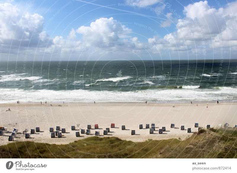 Dem Himmel so nah Mensch Natur Ferien & Urlaub & Reisen Wasser Erholung Landschaft Wolken Umwelt Küste Schwimmen & Baden Freiheit außergewöhnlich Sand hell
