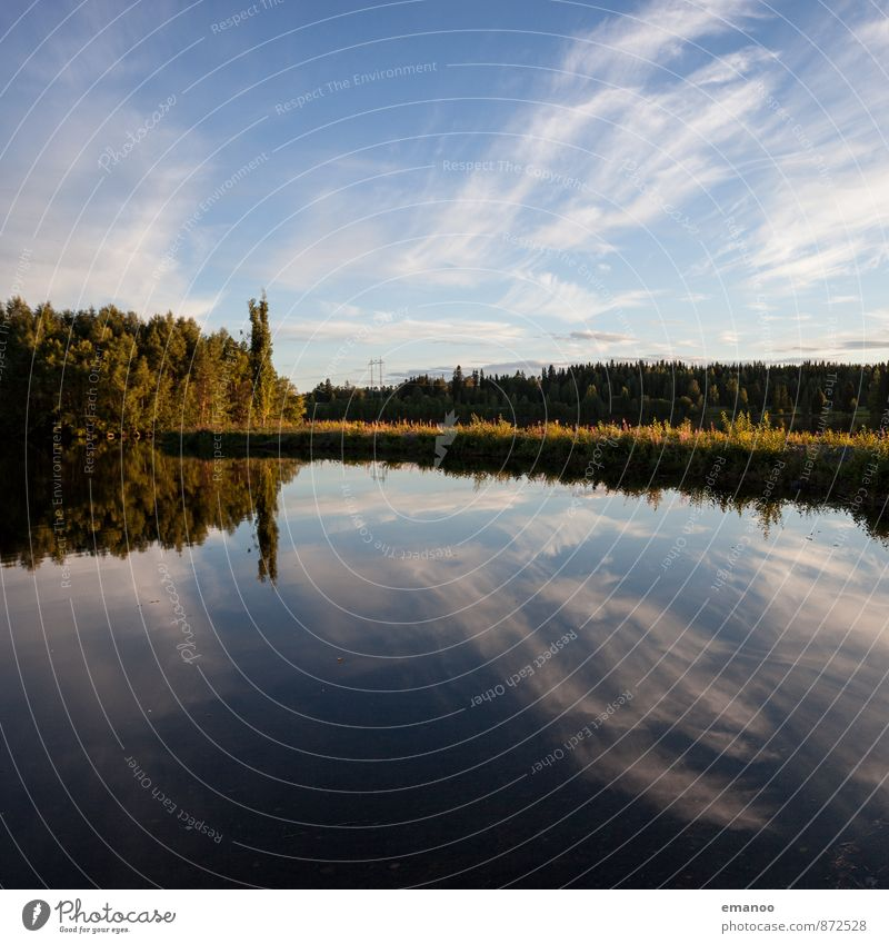 schwedische Seen! Schwimmen & Baden Ferien & Urlaub & Reisen Ausflug Ferne Freiheit Sommer Natur Landschaft Pflanze Wasser Himmel Wolken Horizont Klima Wetter