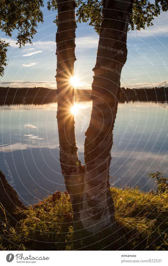 die doppelte Sonne in Schweden Himmel Natur Ferien & Urlaub & Reisen Wasser Sommer Baum Erholung Landschaft ruhig Ferne Wald Wärme Freiheit See glänzend