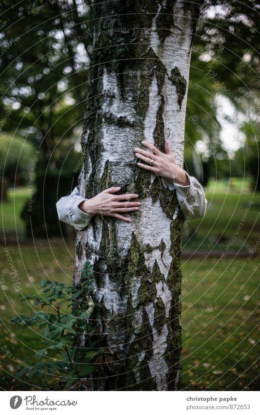 liebt holz harmonisch Meditation feminin Arme 1 Mensch Natur Pflanze Herbst Baum Holz festhalten Liebe Umarmen Sympathie Freundschaft Zusammensein Kraft