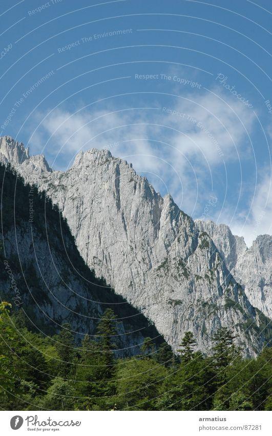 Wilder Kaiser Natur Wolken Wald Berge u. Gebirge Klettern Baumkrone Bergsteigen steil massiv alpin Bergkamm Steilwand Kaisergebirge