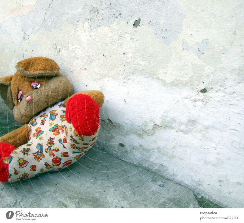 baerchen alt Haus Einsamkeit Tier Wand Spielen Traurigkeit klein Beton Zeit Trauer süß retro Bodenbelag liegen Spielzeug