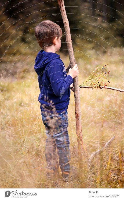Hänschen klein Mensch Kind Natur Ferien & Urlaub & Reisen Ferne Wald Wiese Gefühle Herbst Gras Junge Spielen Freiheit Stimmung maskulin Freizeit & Hobby