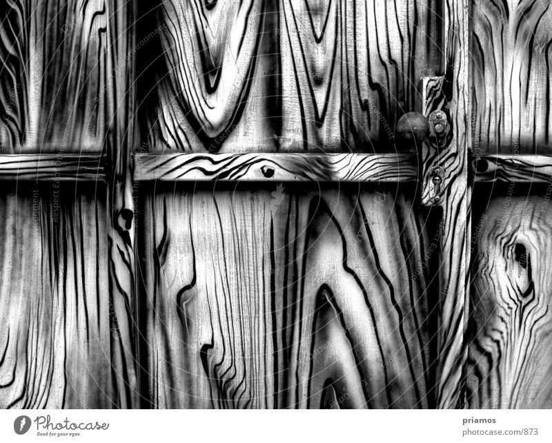 zebra geschlossen Fototechnik Schwarzweißfoto Tür Tor