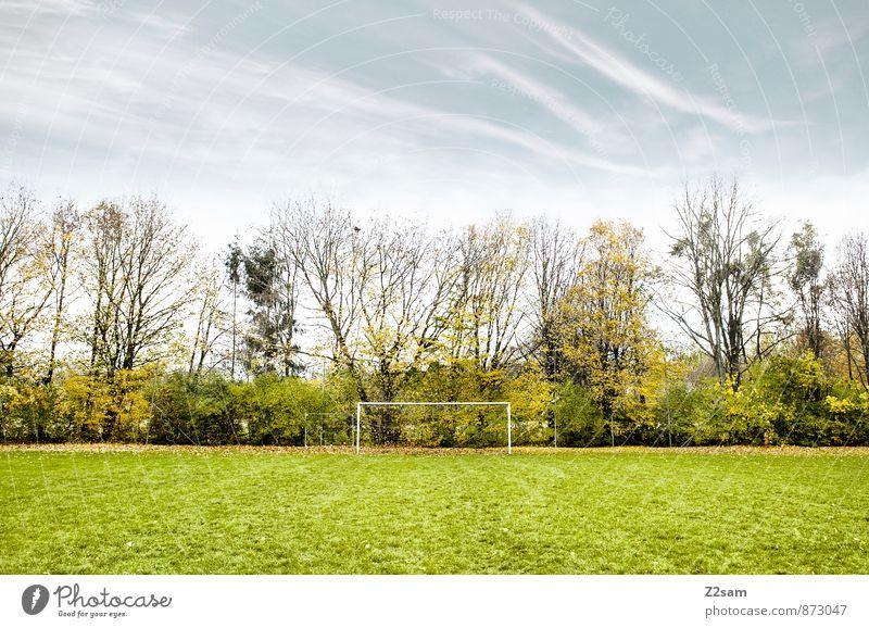 SPIEL R A U M Freizeit & Hobby Spielen Sportstätten Fußballplatz Fußballtor Natur Landschaft Himmel Herbst Schönes Wetter Sträucher Wiese natürlich blau grün