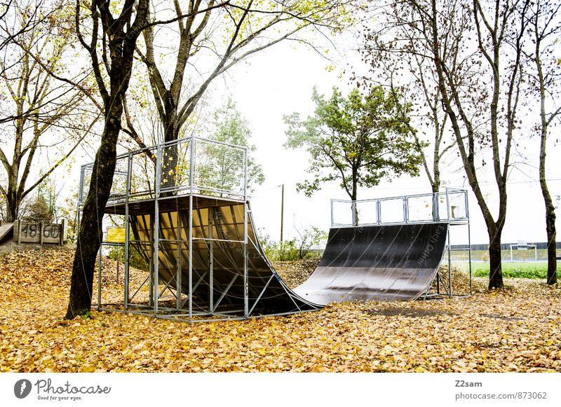SPIEL R A U M Funsport Rampe Sportstätten Halfpipe Umwelt Natur Landschaft Herbst Baum Sträucher Blatt Park trendy natürlich ruhig Einsamkeit Freizeit & Hobby