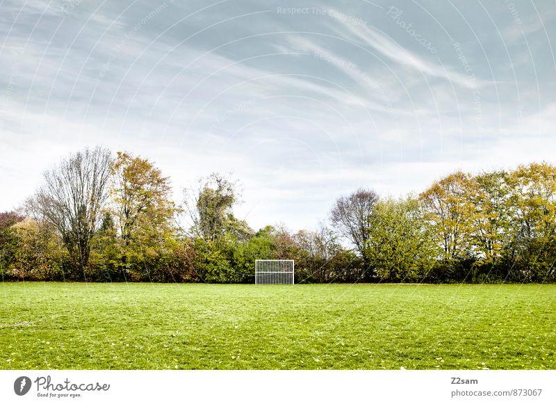 SPIEL R A U M Freizeit & Hobby Spielen Sportstätten Fußballplatz Natur Landschaft Himmel Wolken Winter Schönes Wetter Baum Gras Sträucher Wiese einfach frisch