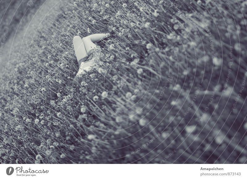 ::14-34:: Mensch Kind Natur Ferien & Urlaub & Reisen Jugendliche Sommer Junge Frau Erholung Blume ruhig Mädchen Herbst Wiese Gras Garten liegen