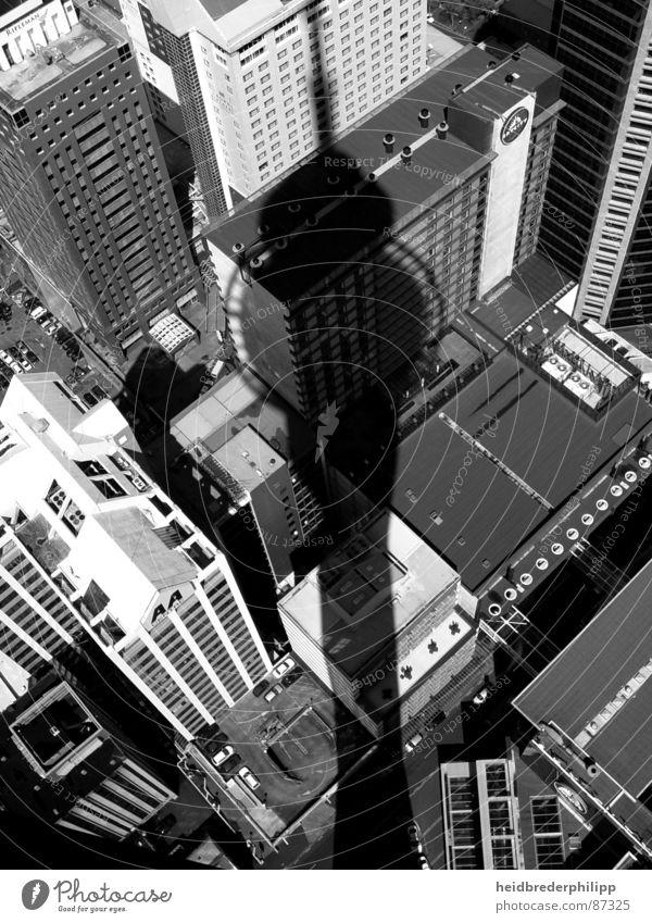 Über den Dächern Aucklands Neuseeland Haus Dach Stadtzentrum Dinge Schatten Schwarzweißfoto