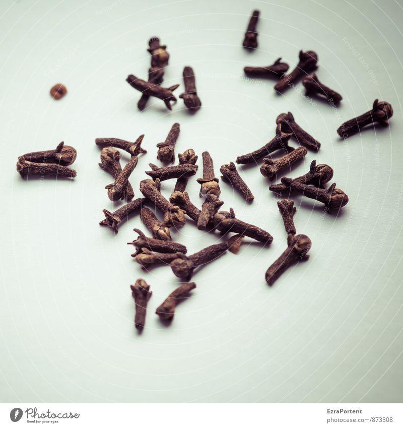 Nelken Lebensmittel Kräuter & Gewürze Ernährung Natur braun schwarz weiß Duft Gewürznelke viele Haufen geschmackvoll Geschmackssinn Würzig kochen & garen