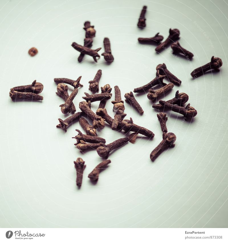 Nelken Natur weiß schwarz Gesunde Ernährung Gesundheit braun Lebensmittel Kochen & Garen & Backen viele Kräuter & Gewürze Duft Geschmackssinn Haufen