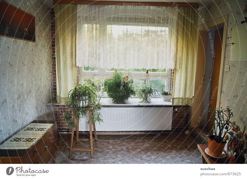 vorraum Häusliches Leben Wohnung einrichten Innenarchitektur Möbel Raum alt Wandel & Veränderung altmodisch Flur Autofenster Vorhang Zimmerpflanze Bild Tür