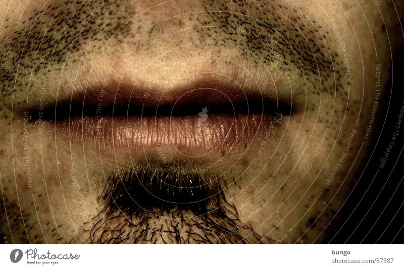 Stummer Schrei Kinnbart Oberlippenbart unhygienisch Lippen Bart unrasiert altmodisch veraltet maskulin Pubertät Selbstportrait Mann Langeweile man Dreitagebart