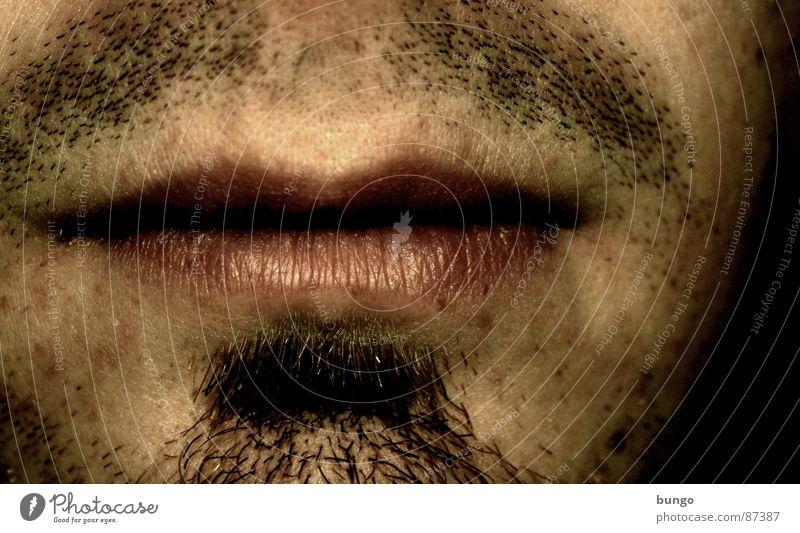 Stummer Schrei Mann maskulin Nase Lippen Bart Langeweile Selbstportrait altmodisch Oberlippenbart Kinn veraltet Stoppel Pubertät Dreitagebart Kinnbart