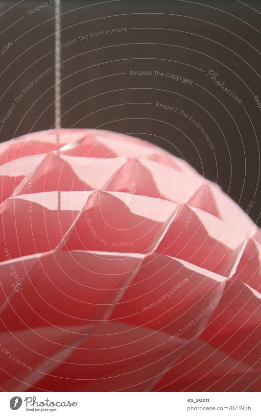 Honeycomb Ball Farbe ruhig Feste & Feiern Party rosa Design Zufriedenheit Häusliches Leben Dekoration & Verzierung ästhetisch Kreativität groß retro Papier rund Schnur