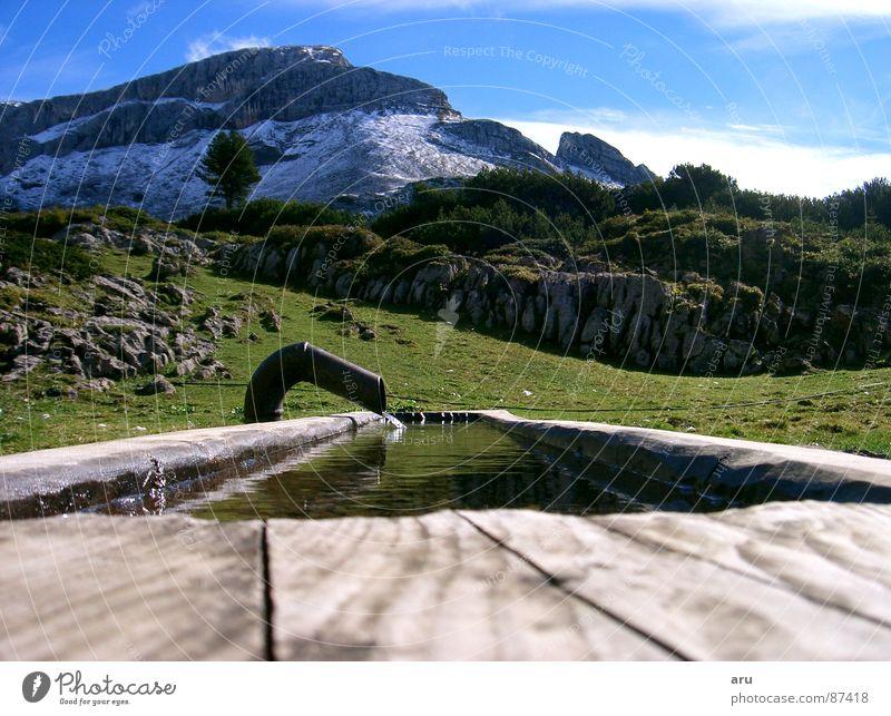 Erfrischung Trog Bundesland Tirol Alm Berge u. Gebirge alpen erfrischung Wasser Natur Niveau