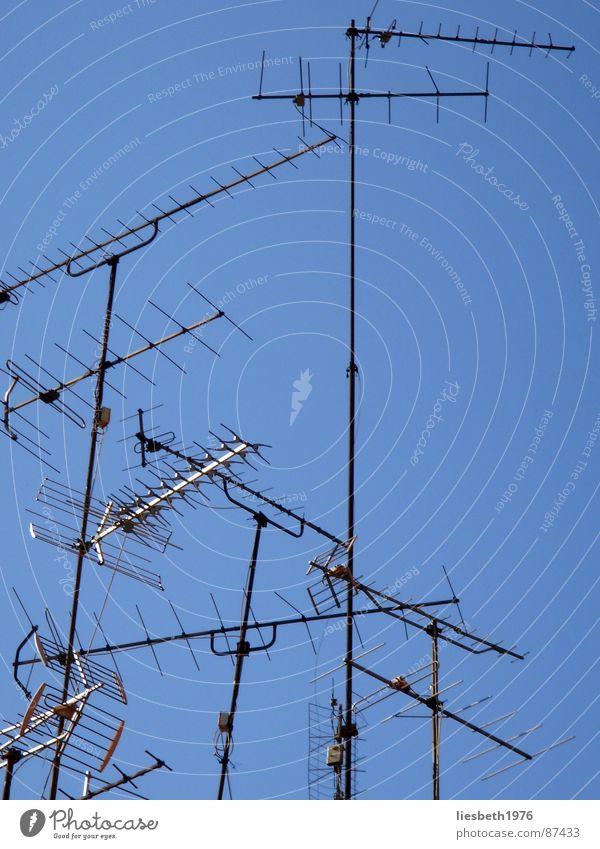 die telefunken Himmel blau Sommer Arme Coolness Technik & Technologie Fernseher Fernsehen Ast Antenne Begrüßung Funken Armee senden verzweigt Fink