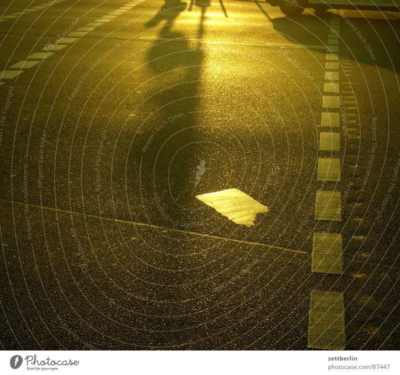 Gegenlicht Stadt Sonne Sommer gold Verkehr Asphalt Sehnsucht Verkehrswege Straßenbelag Sonnenbad blenden Teer Fußgänger Straßenkreuzung Straßenverkehr strahlend