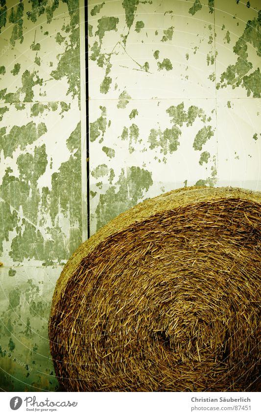 Dingsi gerollt Farbe Tür Flügel Tor Verfall Eingang Halm Rolle Spalte Stroh Trommel Walze abblättern Farblosigkeit Windung Strohballen
