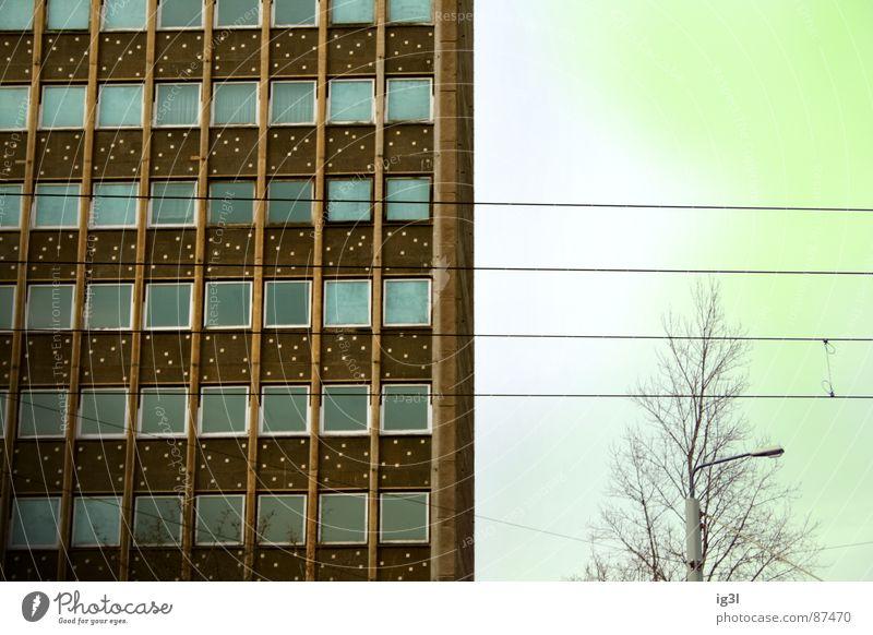DDR-Relikt Himmel grün Haus gelb Farbe Fenster Gebäude Wohnung Hintergrundbild Hochhaus Elektrizität trist Kabel Ast