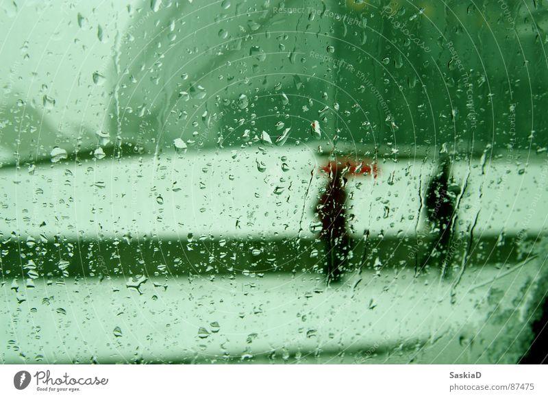 kalt und nass Winter Schnee Fenster Regen Wetter Regenschirm Jahreszeiten Fußgänger