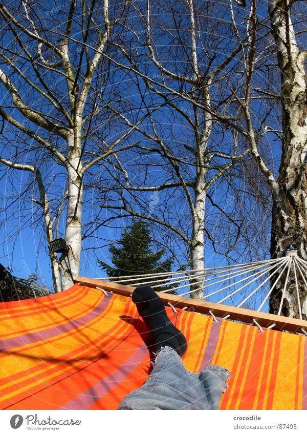 gartenurlaub Mensch Himmel Sommer Freude Ferien & Urlaub & Reisen Erholung Frühling Fuß Wärme Jeanshose liegen Physik Ast Streifen Jeansstoff genießen