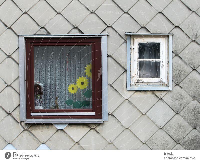 Fenster zum Glück alt Haus Wand Kitsch Häusliches Leben Puppe Sonnenblume Gardine