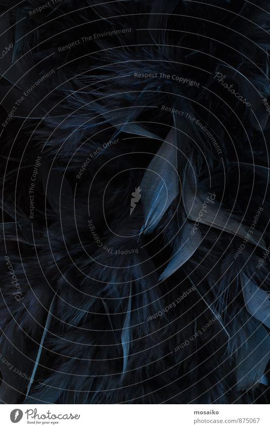 schwarze Federn blau schön dunkel Stil Lifestyle Feste & Feiern Mode Stimmung Design elegant Bekleidung weich Kleid Karneval