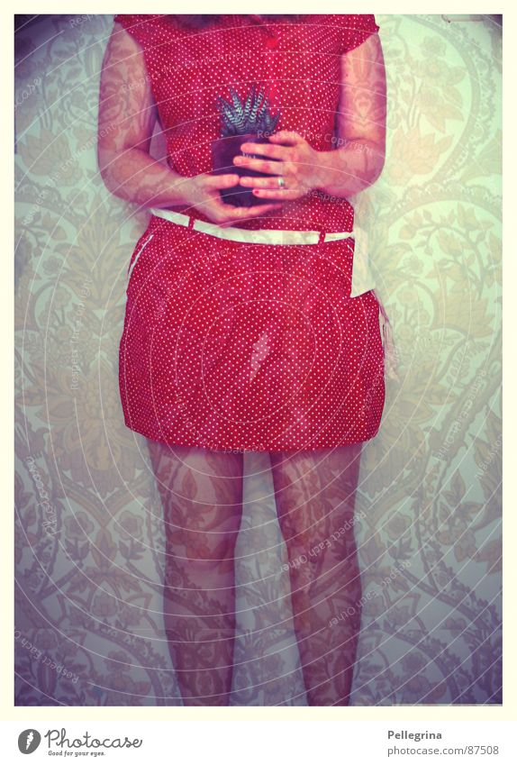 welcome home Frau rot Sommer Wärme Beine Körper Wohnung Kleid