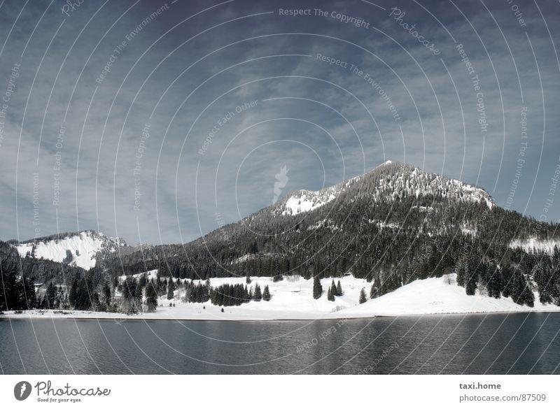 SpitzingSee Berge u. Gebirge Gipfel Wald Tanne Wellen Spiegel Berghütte dunkel steil erhaben kalt Nadelwald hart Bergkette Waldlichtung Macht Schneeschmelze