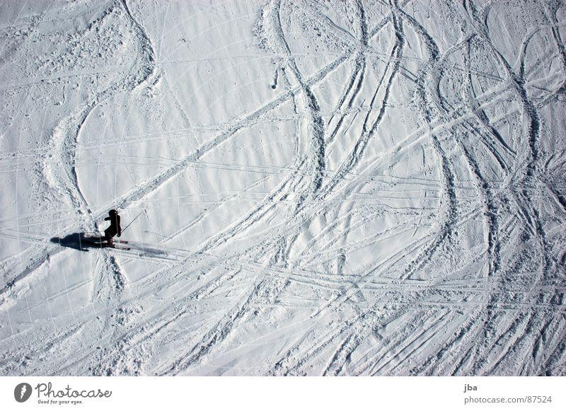 nicht mehr frisch ll Vogelperspektive Neuschnee Pulverschnee Kraft Skifahrer Skifahren Wintersport Teifschnee Schnee Spuren Kurve Linie Schatten Wellenlinie