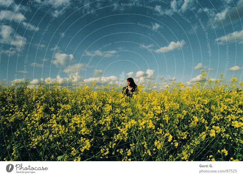 so far away Raps gelb tauchen Rapsfeld himmelblau Wolken schlechtes Wetter Frau langhaarig Strickjacke grün Himmel Sommer untertauchen Mensch joung miss