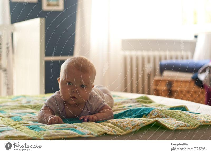 li_002 Mensch feminin Baby Kindheit Körper Kopf Gesicht 1 0-12 Monate krabbeln liegen entdecken Farbfoto Innenaufnahme Textfreiraum rechts Tag Licht