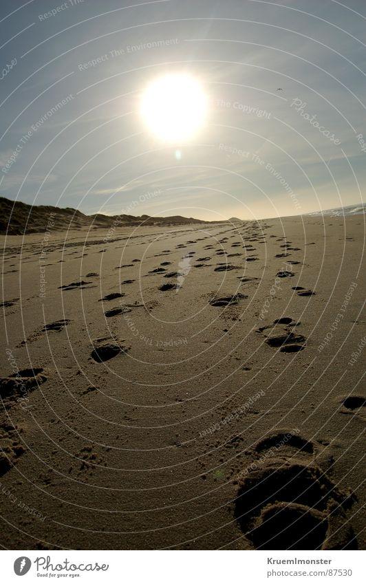 Strand Sylt Fußspur Wolken Winter Küste Sand Sonne Himmel