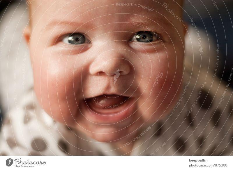 li_001 feminin Baby Kindheit Kopf Gesicht Mensch 0-12 Monate krabbeln Lächeln lachen Fröhlichkeit Glück Freude Sympathie Farbfoto Innenaufnahme Nahaufnahme Tag