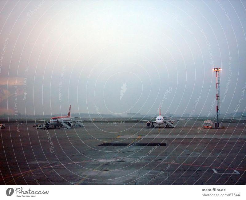 rollfeld Himmel Ferien & Urlaub & Reisen Flugzeug fliegen Luftverkehr Technik & Technologie Ziel Asphalt Flughafen Dienstleistungsgewerbe Berlin Börse Abdeckung