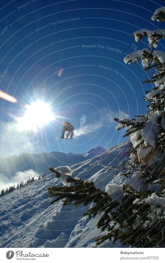Sprung in die Freiheit weiß Winter Schnee hoch Körperhaltung Mut Tanne Blauer Himmel Berghang Freestyle Baum Snowboarding Snowboarder Tiefschnee Pulverschnee