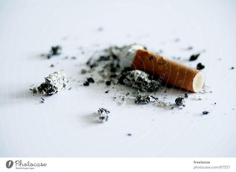 Zigarette Rauchen Tabakwaren Zigarettenstummel Zigarettenasche Vor hellem Hintergrund Freisteller Rest Lungenerkrankung Objektfotografie 1 einzeln