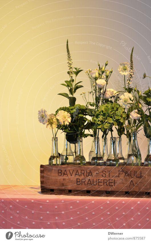 BAVARIA - ST. PAULI BRAUEREI Flasche Lifestyle elegant Stil Design Häusliches Leben einrichten Innenarchitektur Dekoration & Verzierung Möbel Hochzeit Kunstwerk